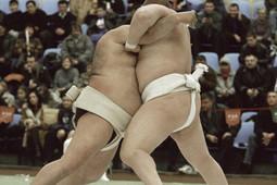 Премьера отЭльмира Низамова, «Дом вразрезе» иборцы сумо наодной сцене сСалаватом