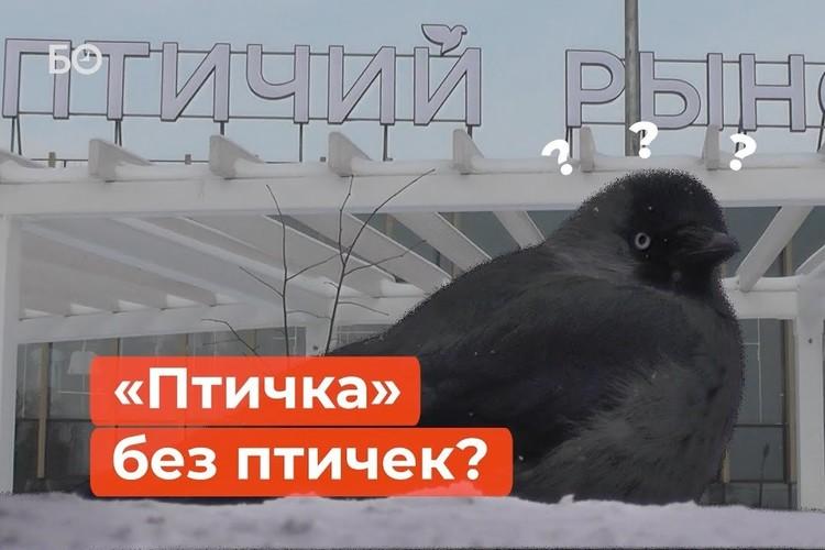 Что отстроили на месте легендарного птичьего рынка?
