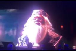 Костин переоделся в героя романов о Гарри Поттере на вечеринке форума «Россия зовет!»