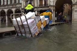Площадь Святого Марка в Венеции оказалась затоплена до критического уровня