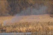 На берегу Казанки загорелась трава