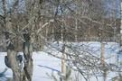 В Казани побит температурный рекорд