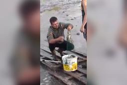В Чебаксе собирают рыбу со дна пересохшего озера