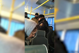 В Осиново задержали активистов, мешавших строительству дороги к МСЗ