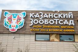 Как выглядит новый зоопарк в Казани до открытия