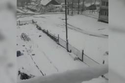 Регионы России завалило первым снегом