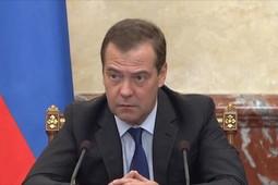 Медведев поручил министру просвещения проанализировать ситуацию со стрельбой в Благовещенске