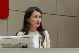 Языковой законопроект: «Депутаты от Татарстана голосовали за постановление с изменениями!»