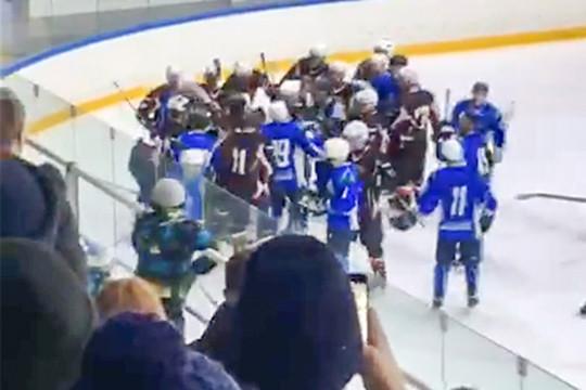 «Белые Медведи» уходят в спячку: за что челнинские хоккеисты избили судью?