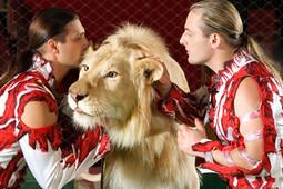 Weekend в Казани: «Рубин» показывает новую форму, и Запашные верхом на льве