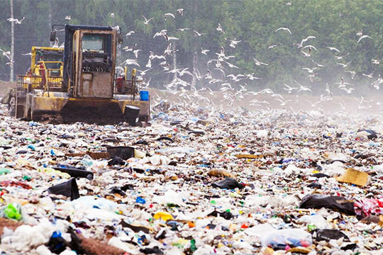 100 дней «мусорной» реформе: регоператоры ТКО грозят коллапсом свалок