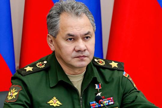 Шойгу сменит Рогозина напосту председателя попечительского совета ФПИ