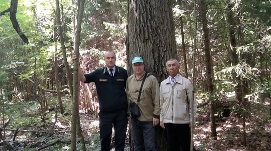 В Татарстане обнаружили дуб, которому больше двух веков