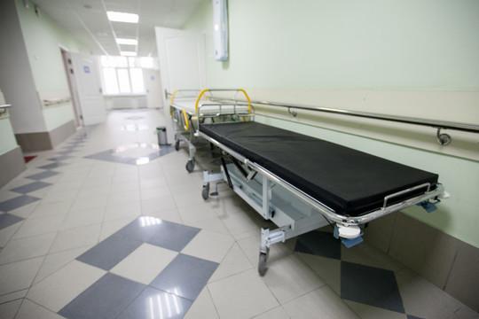 В Челябинске семиклассница умерла от гриппа – школу закрыли на карантин