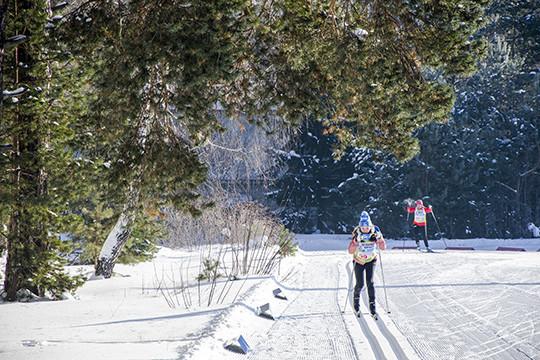 Вказанских парках Победы и«Крылья Советов» появятся лыжные дороги