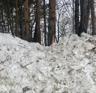 «Испортили деревья и кусты»: жители Челнов пожаловались на «вредную уборку снега» в парке