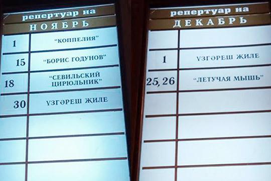 Ирада Аюпова оконкурсе напост директора цирка: «Вызнаете, это моя ошибка»