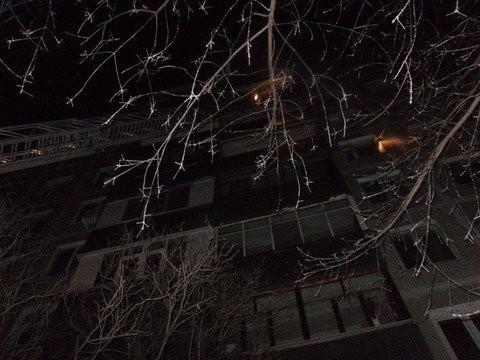 Следком начал проверку пофакту погибели казанца впламени — Пожар наДементьева