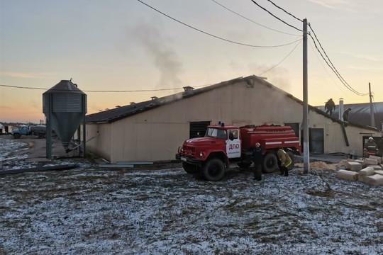 В Татарстане пожарные спасли 2 тыс. индюшек