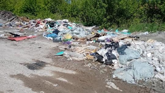 В Казани экологи обнаружили свалку в 1 га