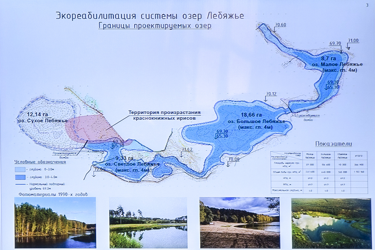 Площадь Лебяжьего озера вКазани могут увеличить с4 до36 га