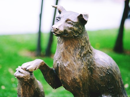 Монумент «собака-копилка» за12 дней собрал 53 тысячи руб.