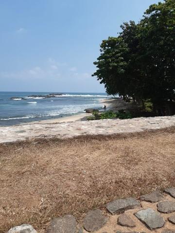 Казанцы не могут вернуться из Шри-Ланки, где накануне закрыли авиасообщение из-за коронавируса