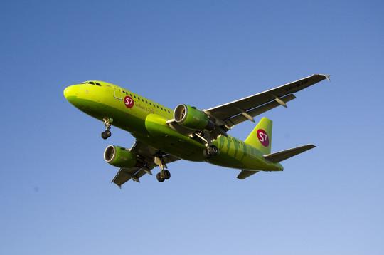 Baza: В Домодедово самолет совершил экстренную посадку – пассажирка угрожает взорвать себя