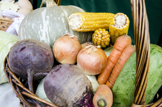 Власти РТ утвердили норматив дохода от продажи продуктов, выращенных в огороде