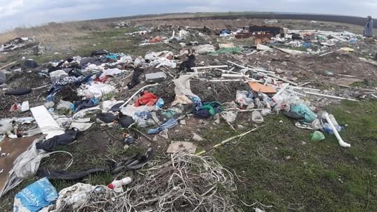 В Татарстане экологи нашли свалку в 2 гектара