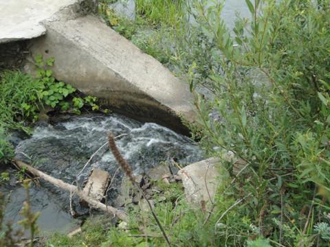 Эксперты ОНФ: «Жители Тукаевского района завалили русло Шильны бетонными блоками»