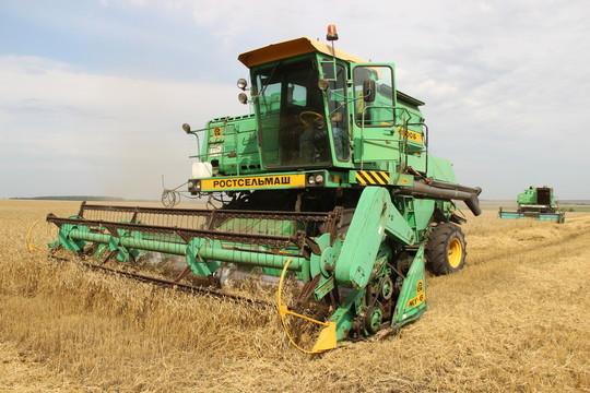 Работы идут на 2 тыс. га в день: с 40% всей площади Буинского района уже собран урожай