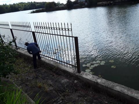 Экологи заставили нижнекамскую дачницу снести забор, отделяющий участок от водоема