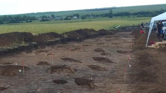 Обнаруженное в Татарстане массовое захоронение признано объектом археологического наследия