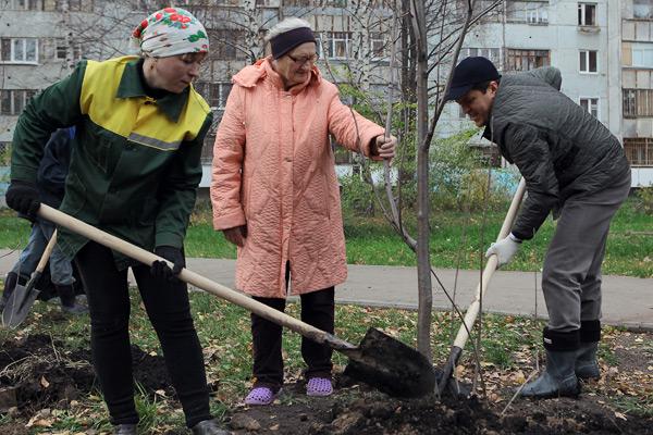 В столице Карачаево-Черкесии высадили более сотни новых деревьев