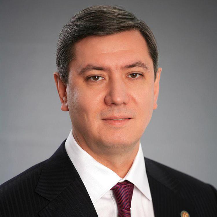 Шайхутдинов  Роман  Александрович, заместитель премьер-министра РТ, курирующий развитие Иннополиса