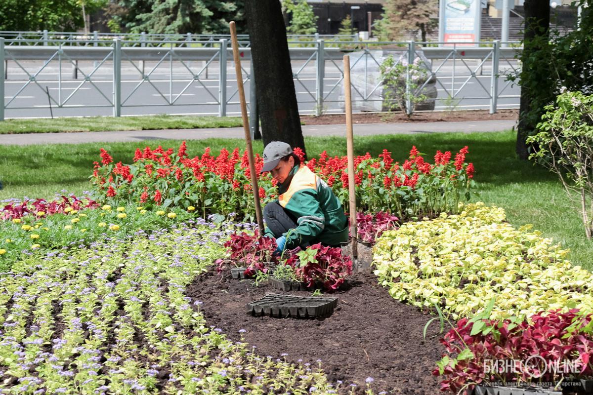Высадили 19 тыс. кв. метров цветников, 4 тыс. деревьев, 20 тыс. кустарников, вывесили 3,5 тыс. кашпо