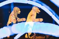 Январь. Театр ростовых кукол в парке Горького. Сергей Елагин