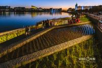 Июнь. Ночная набережная на озере Кабан. Сергей Елагин
