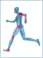Как заниматься спортоми сохранитьздоровье мышц,позвоночника и суставов.Им-ся прот-я,необх.консульт.спец-та