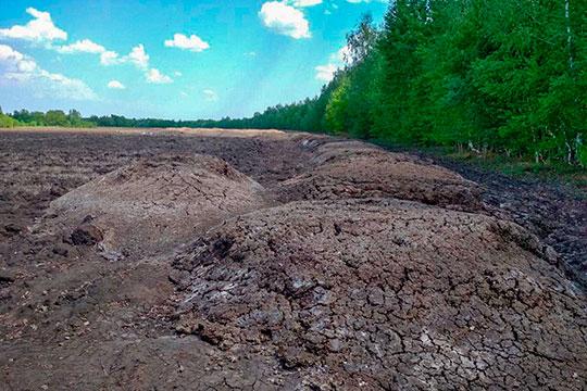 «Невозможно форточку открыть, мы просто задыхались!»: поселки под Лаишево завалило навозом