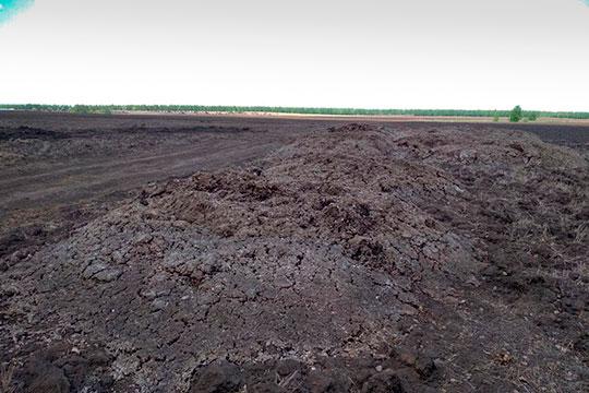 «Около тысячи тонн птичьего помета было складировано в северной части поселка Травкино, это между Кирби и Травкино в Лаишевском районе, по Атабаевской трассе»