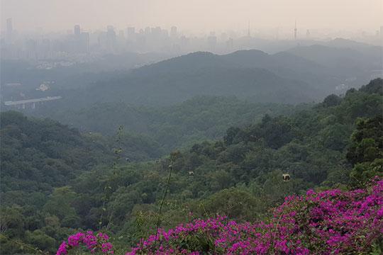 Свысоты горы Бэйюньшань видны только размытые контуры города
