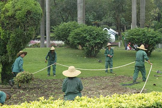 ВШеньчжене почти тысяча парков, авГуандуне очень много зелени ицветов