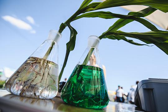 Самый дорогой извыставленных напродажу готовых бизнесов внашем обзоре— это действующий завод по производствy минерало-органических удобрений. Производство оценивается в350млнруб.