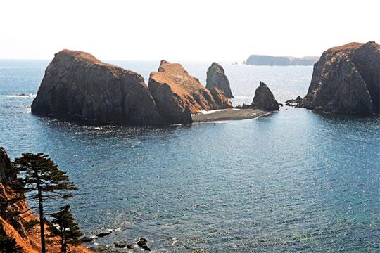 Япония «нанаших глазах делит Курилы иактивно строит планы наихосвоение»