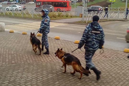 Как сообщили корреспонденту «БИЗНЕС Online» в пресс службе ТЦ «Кольцо», после обследования торгового центра спецслужбами и кинологами с собаками, ничего не было обнаружено
