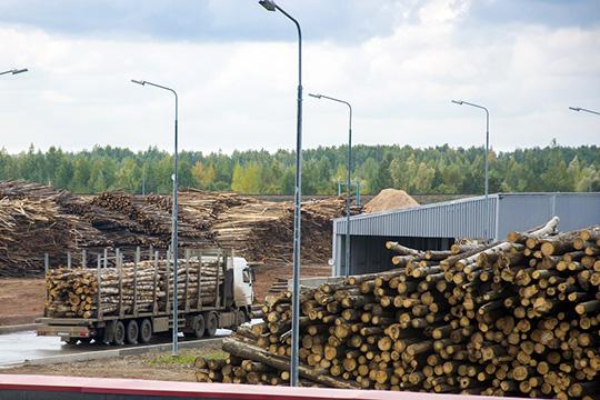 В40млн рублей оценилпроизводство, специализирующееся наизготовлении оцилиндрованного бревна для срубов, его владелец