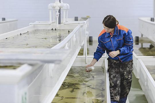«Отечественное оборудование внашем проекте составляет93 процента. Когда президент РТРустам Миннихановоткрывал первую очередь завода, мыиспользовали это как свою фишку»