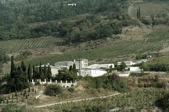 Выяснилось, что наделы, переданные татарстанцам, — это бывшие опытные поля Всероссийского научно-исследовательского института виноградарства и виноделия «Магарач» РАН